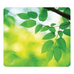Cheap Stationery Supply of Fellowes 59038 Earth Series Mouse Pad Leaves 6 Pack Office Statationery
