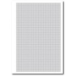 Cheap Stationery Supply of Cambridge (A4) Exercise Paper Graph Ruled 1 5 and 10mm Squares (Pack 5 x 500 Sheets) 100104528 Office Statationery
