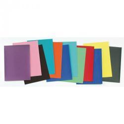 Cheap Stationery Supply of Classmates Smooth Coloured Paper Assorted Office Statationery