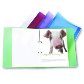 Rapesco Eco 2 A4 Ring Binder 25mm Assorted (Pack of 10) 1044