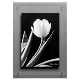 TPAC Photo Acrylic Wall Display A3 ADPA3